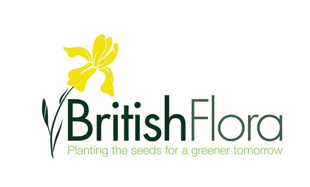 Native British Wildflower Plants