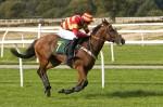 Gallops & Racecourse Mix