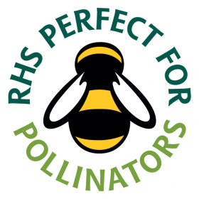 Perfect for Pollinators1