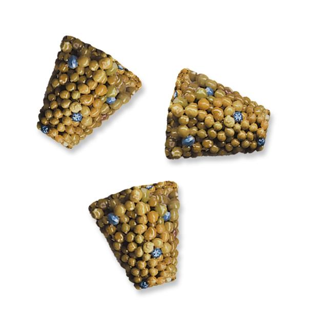 Everris Scotts Sierrablen Flora Tablets